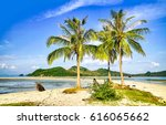 palm trees on tropical phuket... | Shutterstock . vector #616065662