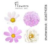natural vector set flowers... | Shutterstock .eps vector #616074356