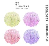 natural vector set colorful... | Shutterstock .eps vector #616075058