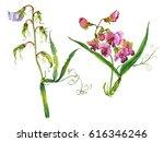 watercolor hand painted sweet... | Shutterstock . vector #616346246