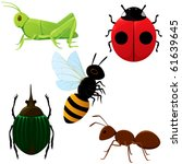 A Set Of Various Insects.