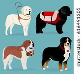 Set Of Dogs Rescuers And...