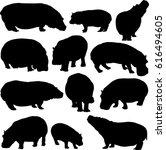 Hippo Silhouette Contour