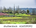 beautiful countryside scenery... | Shutterstock . vector #616539392