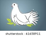 two white pigeons | Shutterstock .eps vector #61658911