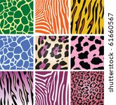 Vector Colorful Animal Skin...