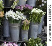 Small photo of White daffodils in an aluminum bucket as adornment of the entrance