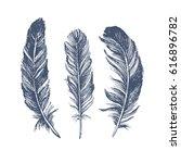 feather pattern | Shutterstock .eps vector #616896782