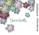green colorful succulents... | Shutterstock .eps vector #616906892
