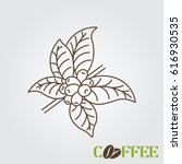 line icon coffee plant with...   Shutterstock .eps vector #616930535