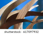 macro composition of dry curved ...   Shutterstock . vector #617097932