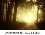 light at the end of a forest... | Shutterstock . vector #61711150