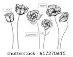 hand drawing poppy  tulip and... | Shutterstock .eps vector #617270615