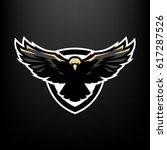 Eagle In Flight  Logo  Symbol.