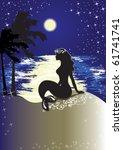 Mermaid Sitting Ashore At Night
