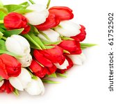 Beautiful Bouquet Of  Tulips O...