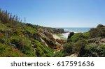 praia do evaristo an the... | Shutterstock . vector #617591636
