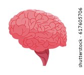 human brain icon | Shutterstock .eps vector #617605706