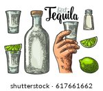 set for tequila. hand holding... | Shutterstock .eps vector #617661662