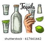 set for tequila. hand holding... | Shutterstock .eps vector #617661662