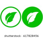 two simple natural green leaf...   Shutterstock . vector #617828456