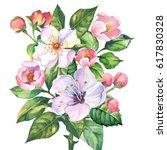 watercolor branch blossom sakura | Shutterstock . vector #617830328