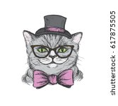 Cute Cat Dressed In A Hat  Tie...