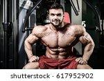 handsome fit caucasian muscular ... | Shutterstock . vector #617952902