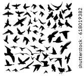 Stock vector set of silhouettes of birds vector 618019382