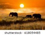 family of elephants at sunset... | Shutterstock . vector #618054485