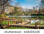 Japanese Bridge in Botanical Garden