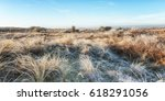 typical dutch landscape in the... | Shutterstock . vector #618291056