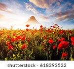 blooming red poppies on field... | Shutterstock . vector #618293522