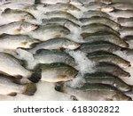 fresh fish at supermarkets | Shutterstock . vector #618302822