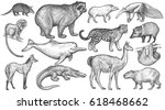animals of south america big... | Shutterstock .eps vector #618468662