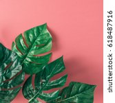 Tropical Palm Leaves Pink Background - Fine Art prints