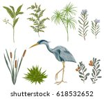 heron bird and swamp plants.... | Shutterstock .eps vector #618532652