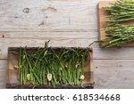 asparagus griddle | Shutterstock . vector #618534668
