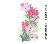 Oleander  Nerium Oleander ....