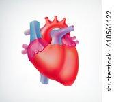 medical light organ anatomic... | Shutterstock .eps vector #618561122