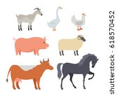 farm animals collection. goat... | Shutterstock . vector #618570452