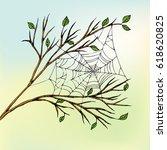 The Spider Web Hangs Between...