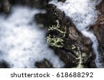 frozen objects and backgrounds  ...   Shutterstock . vector #618688292