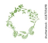 vector herbal green wreath with ... | Shutterstock .eps vector #618705698