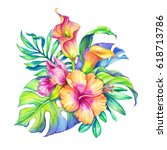 watercolor floral illustration  ... | Shutterstock . vector #618713786