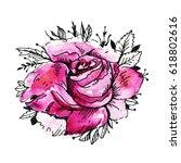 pink watercolor  roses ... | Shutterstock . vector #618802616