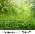 spring grass background | Shutterstock . vector #618846635