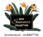 new summer collection sale... | Shutterstock .eps vector #618887756