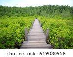 wooden walkway in mangrove... | Shutterstock . vector #619030958