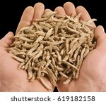 handful of bran sticks | Shutterstock . vector #619182158